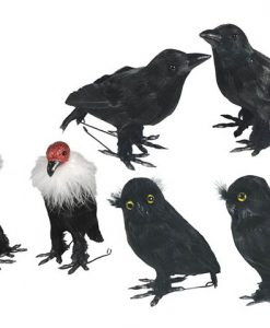 Pájaros Halloween