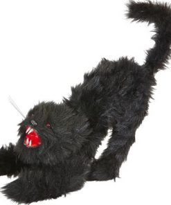 Gato negro con luz
