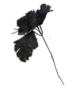 Flor Negra de Novia