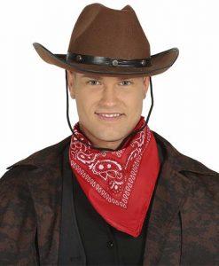 Sombrero vaquero